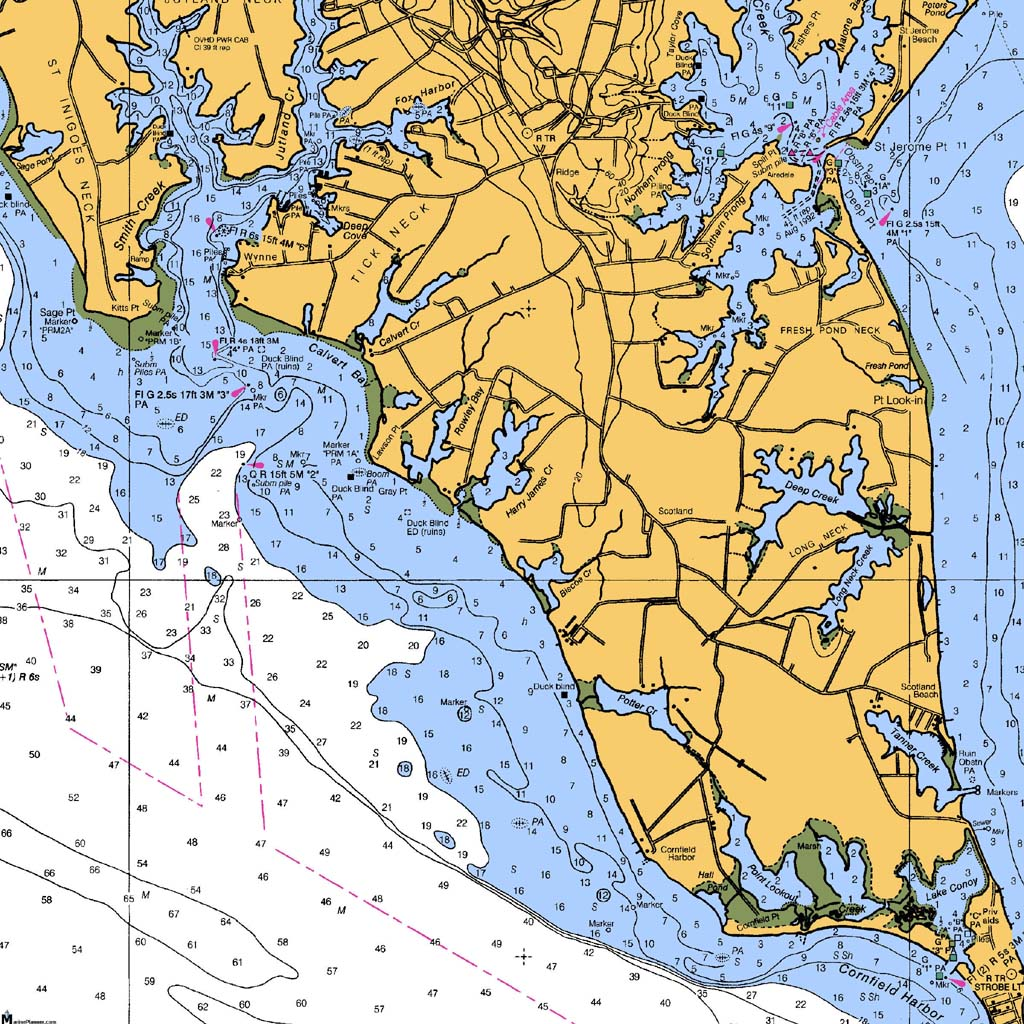 Point lookout for Point lookout fishing report